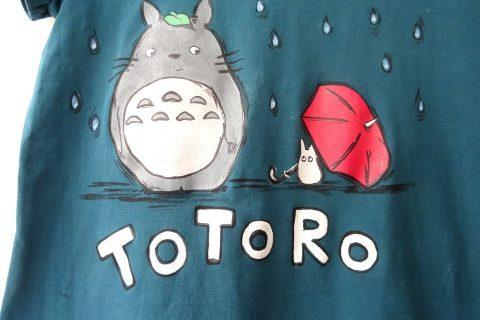 Totoro-6